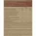 Протеин веганский, BiotechUSA, (шоколад-корица), 500 г